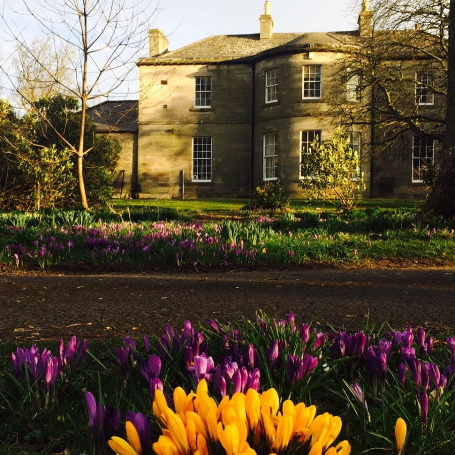 Budle Hall Spring