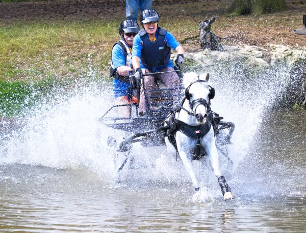 Bywell Horse Driving Trial