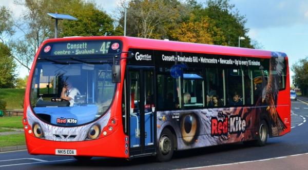 Discover Fest - Bus Tour