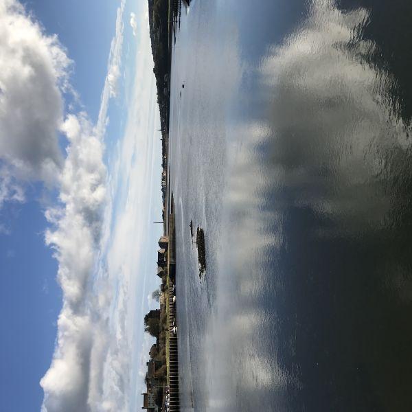 Tweed Estuary