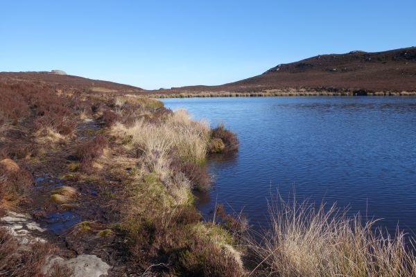Harbottle Lake