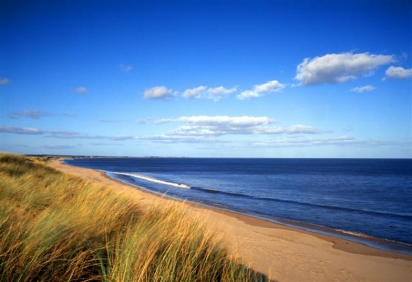 Druridge Bay Country Park is near Amble Cottages
