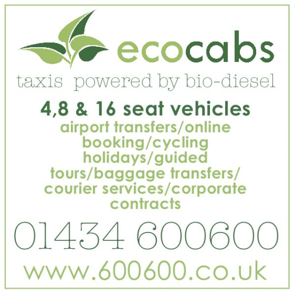 Ecocabs Services
