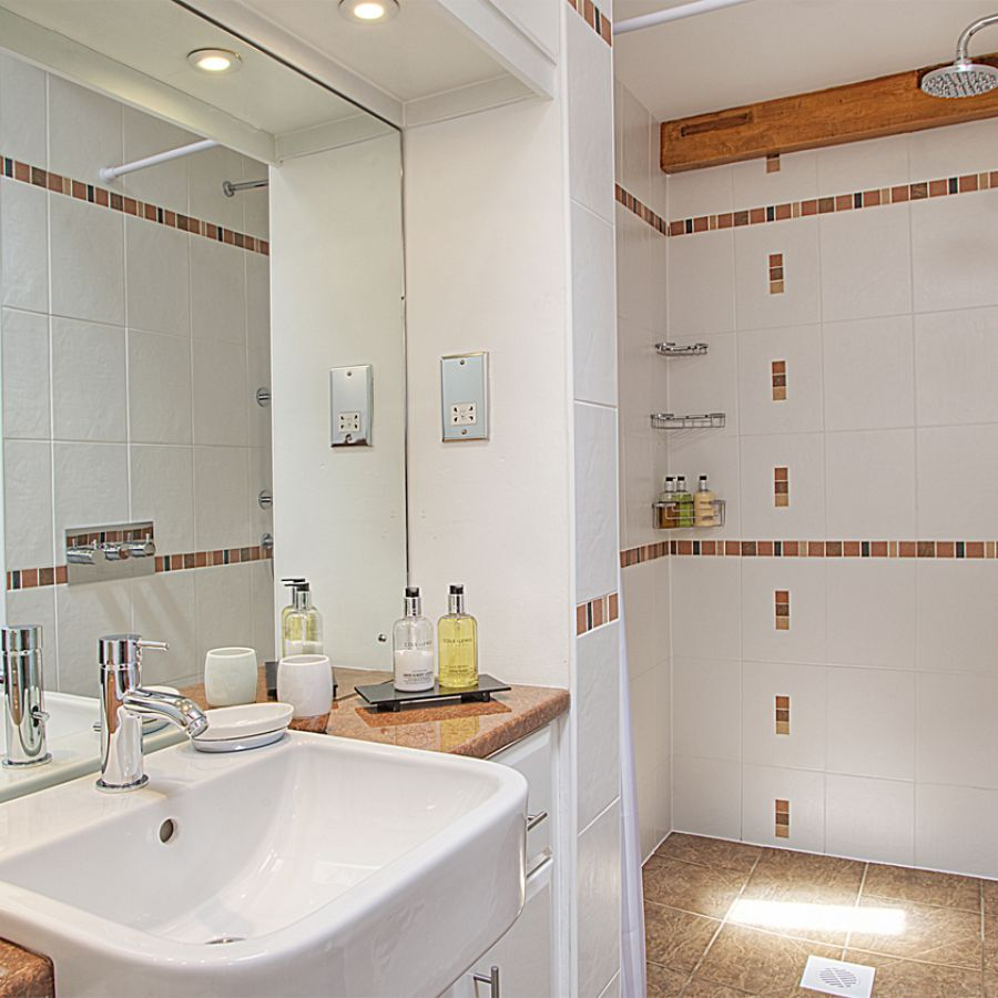 Wetroom Style Bathroom