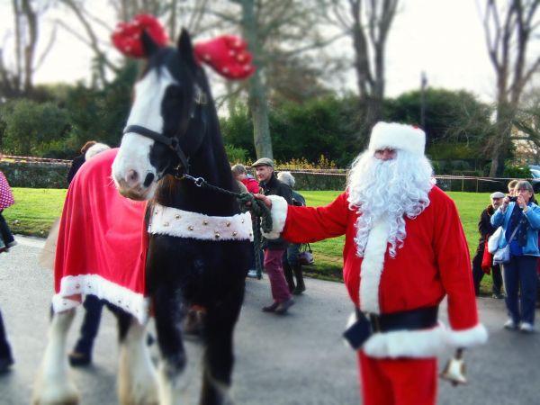 Santa and Merlin the Giant  'reindeer'