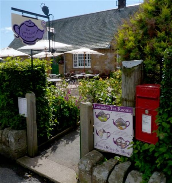 Lavender Tearooms in Etal