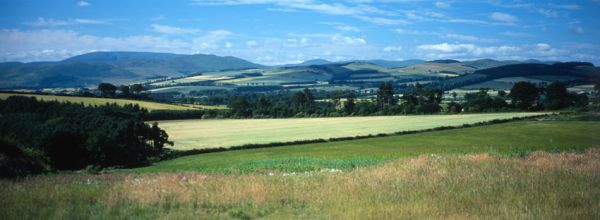 View across Ford & Etal Estates towards Cheviot