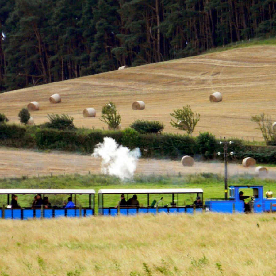 Train with harvested field