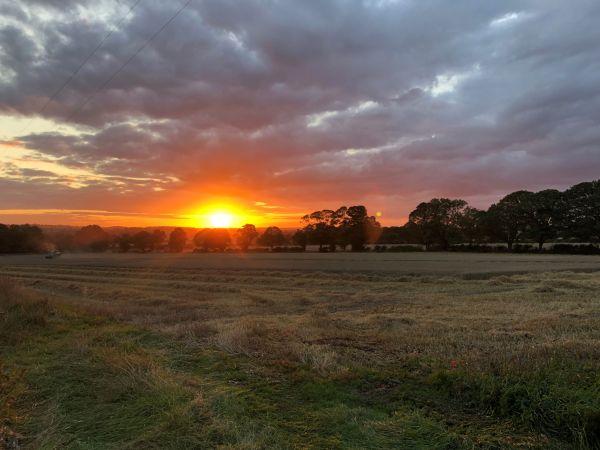 Sunset at Lavender Hut
