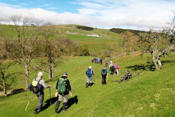 Haltwhistle Walking Festival