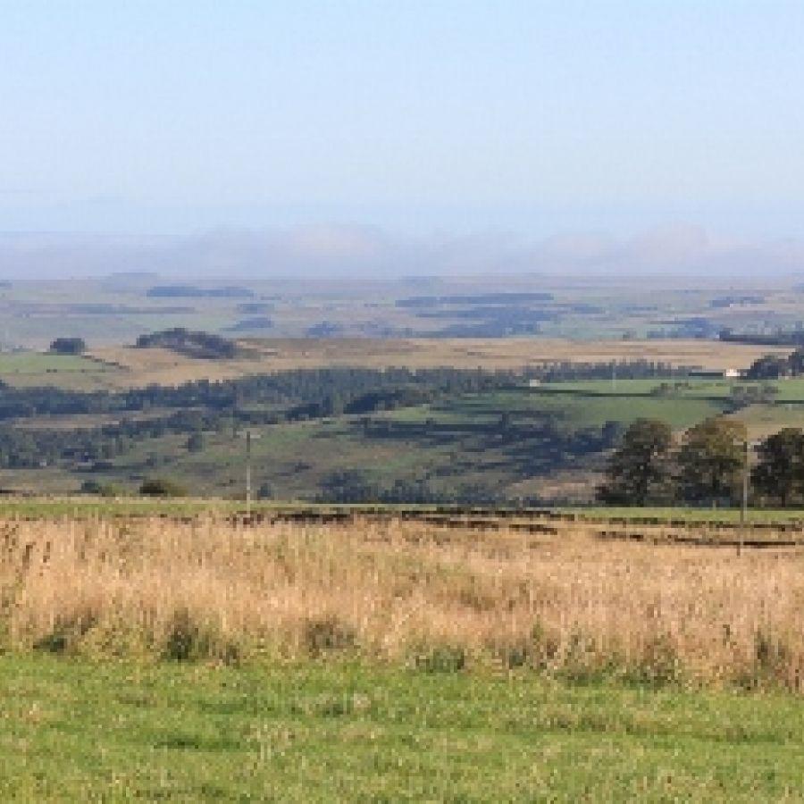 High Keenley Fell Farm 3