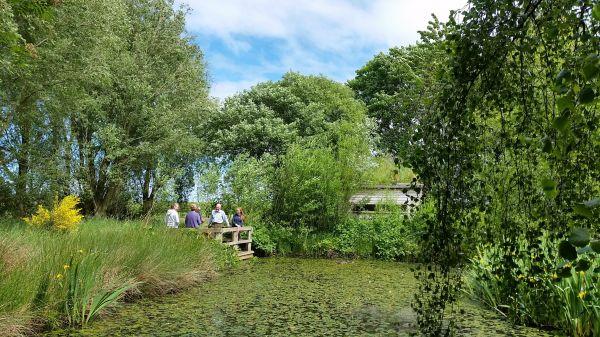 Our farm footpath, pond and bird hide
