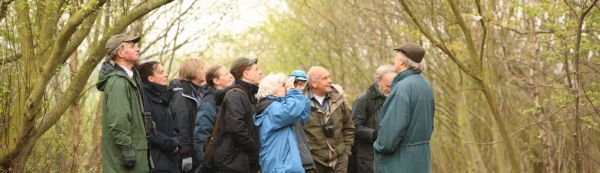 Introduction to Birdsong – Dawn Chorus Walk