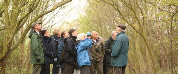 Introduction to bird song - dawn chorus walk
