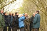 Introduction to bird song - dawn chorus walk