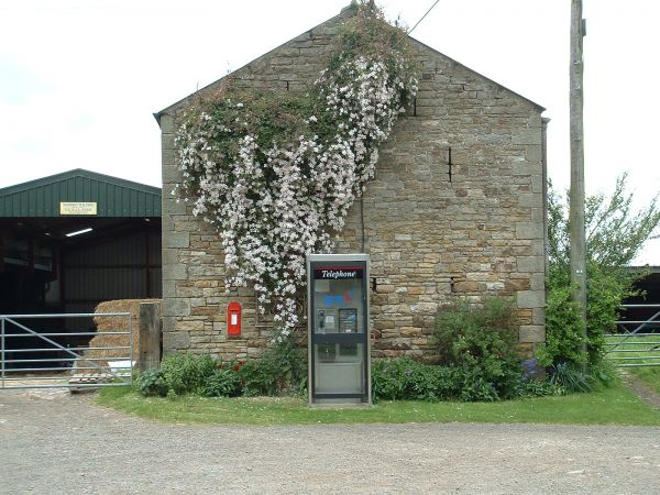 Kellah farm Yard