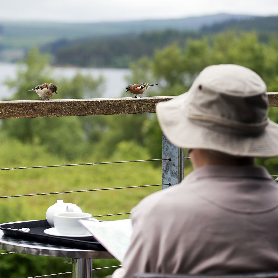 Cafe on the Water at Tower Knowe