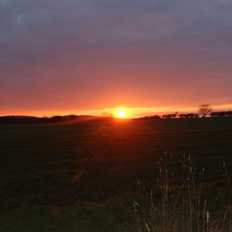 Cheviot Sunset