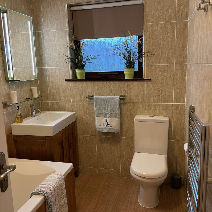 Bathroom with overhead shower.