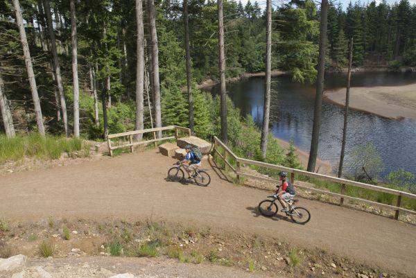 Cycling along the Lakeside Way is near Kielder ZipCoaster