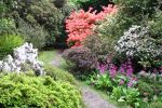 Northumberland Gardens Package: Camp + tour