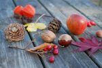October Tiny Treasure Hunt at Howick