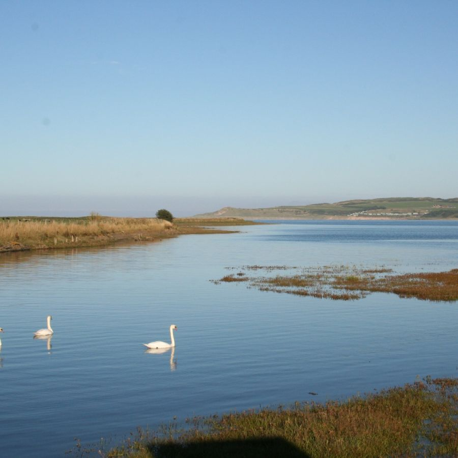 View from our bird-watching hide