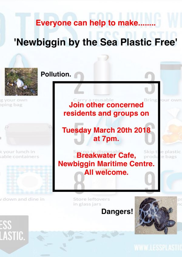 Plastic Free Newbiggin by the Sea
