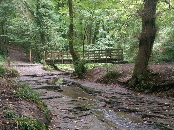 Plessey Woodland is near Burradon Farm Houses & Cottages