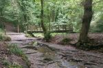 Plessey Woodland is near Northern Experience Wildlife Tours