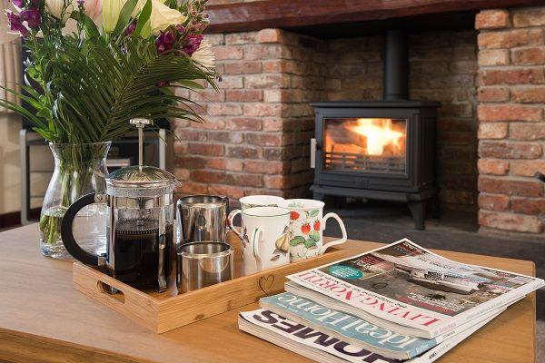 Cosy log stove - DV