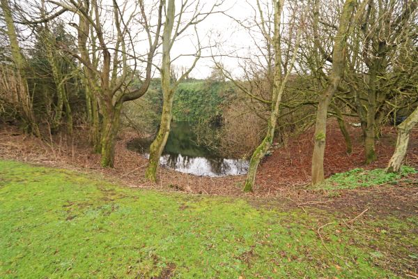 Quarry Haven, Bamburgh - garden pond at bottom of garden