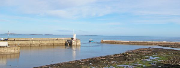 Seahouses - boat trips to Farne Islands