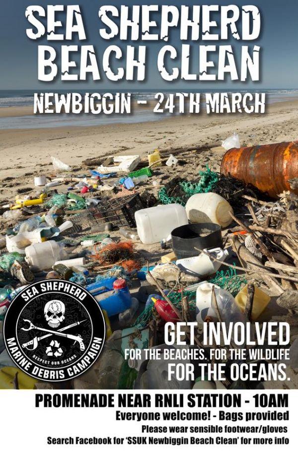 Sea Shepherd Beach Clean