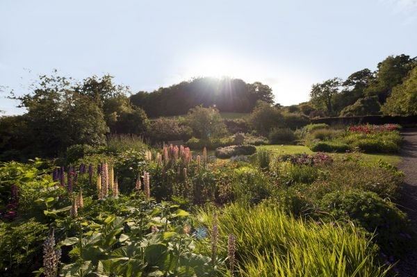 Serenades and sunsets - live music in the walled garden