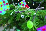 Sill Sunday - Natural Festive Decorations