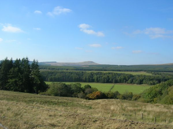 View from Sorbietrees