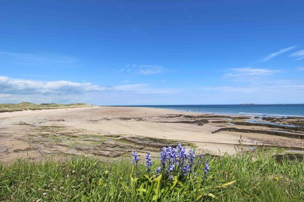Sound of the Sea, nearby Seahouses beach with views over towards bamburgh