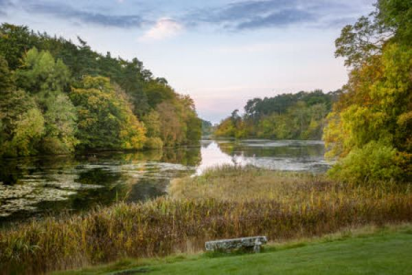 Special spaces - Rothley Lake photography experience at dawn
