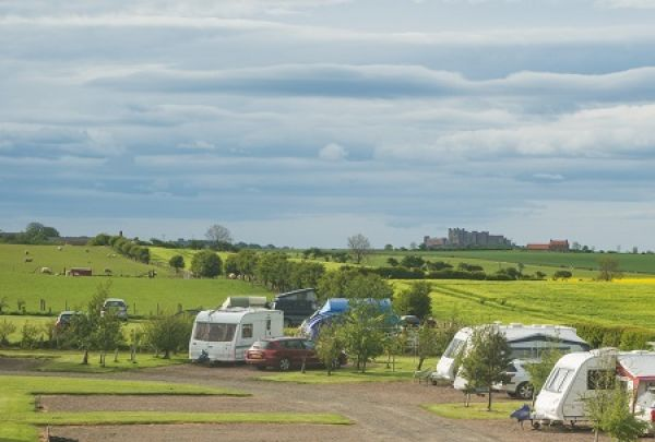 Springhill Farm Caravans is near Bamburgh Castle Golf Club