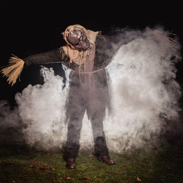 The Alnwick Garden Spooky Walk