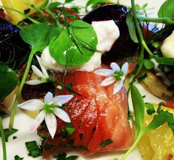 Dill Sea trout Beetroot
