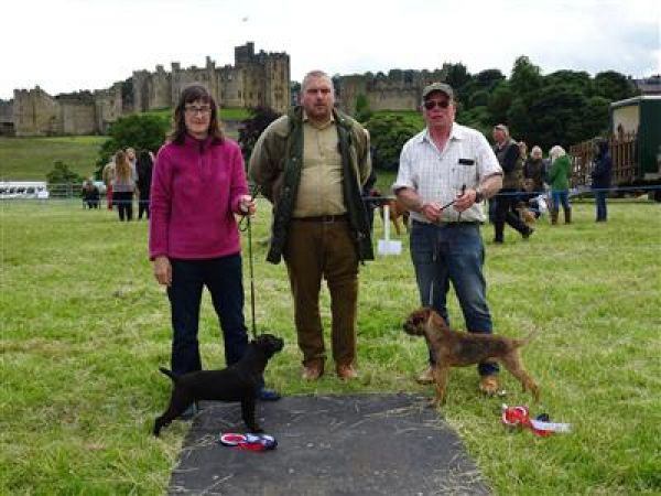 The Percy Country Dog and Hound Show