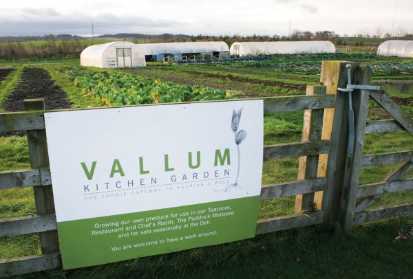 Vallum Kitchen Garden
