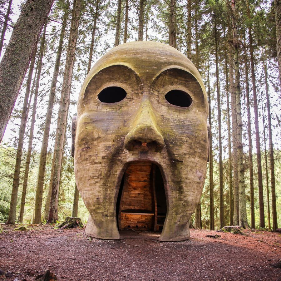 Forest Head c Neil Denham