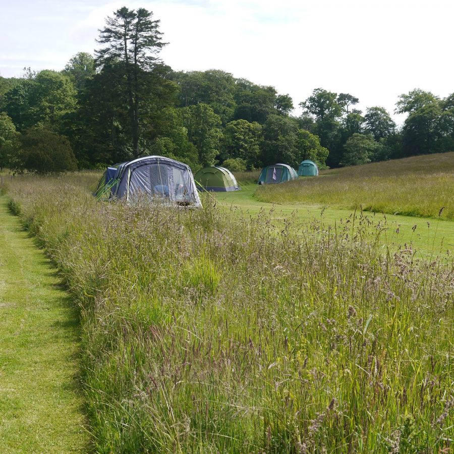 Tent Pitches at Walkmill