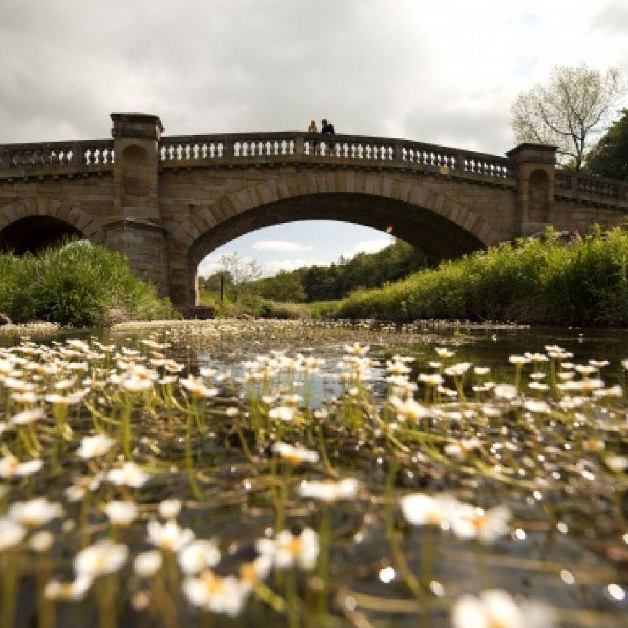 Paine's Bridge