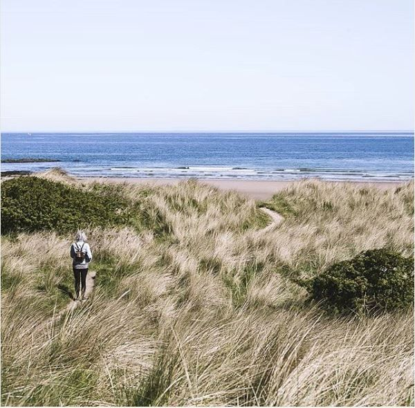 What's New in Northumberland