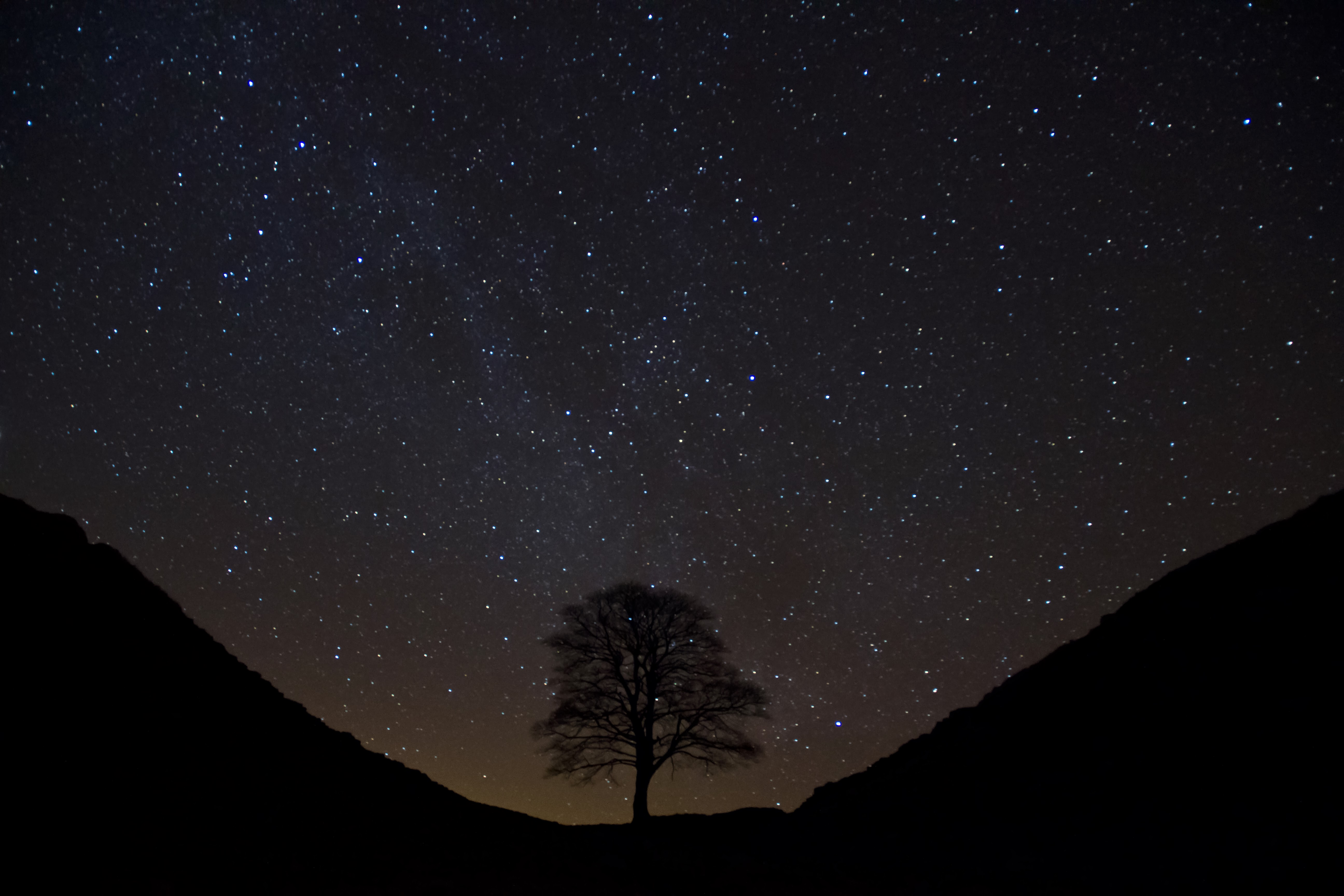 Sycamore Gap credit Cain Scrimgeour