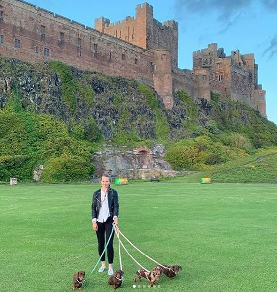 Dogs at Bamburgh Castle